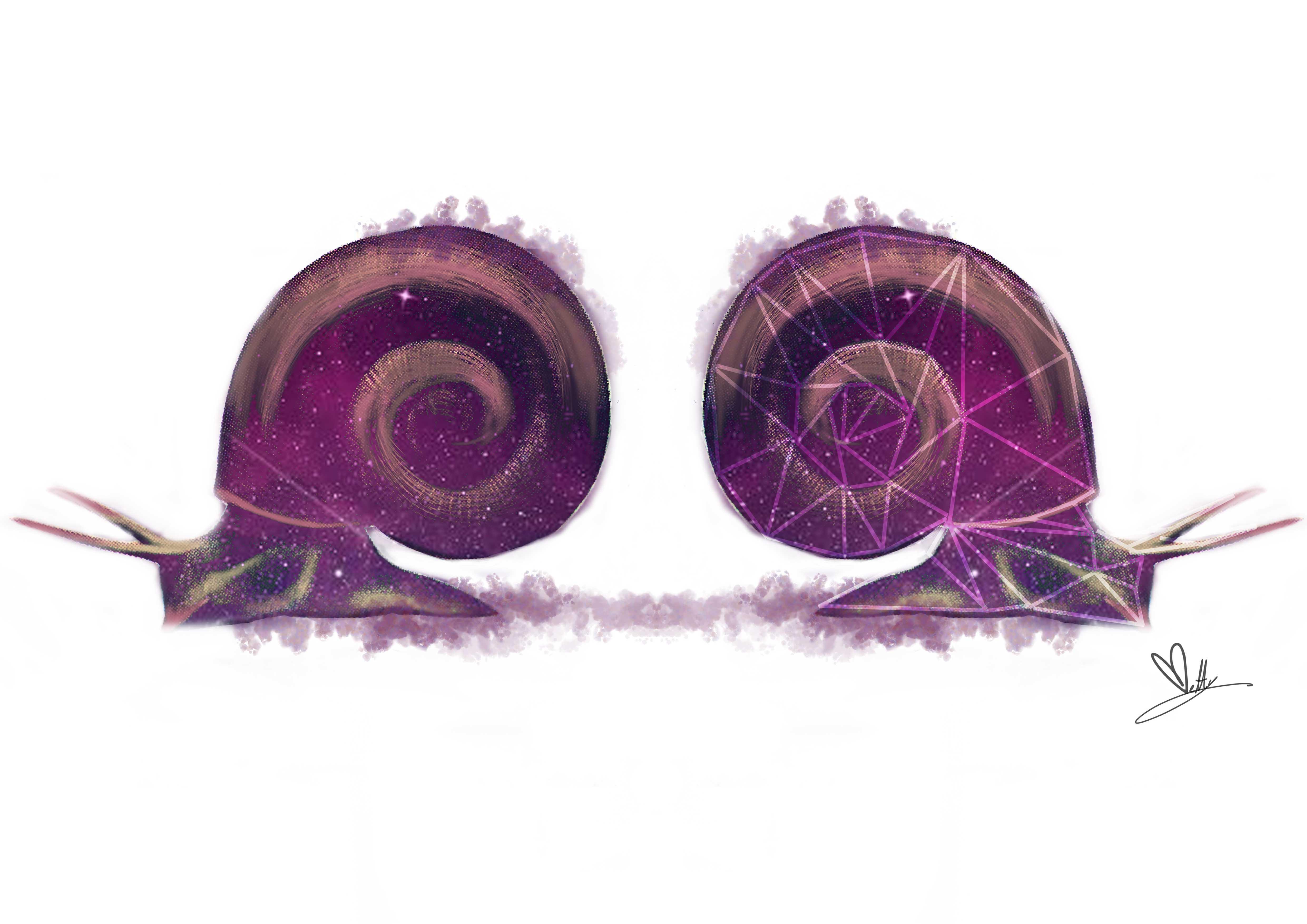 lumache-universo