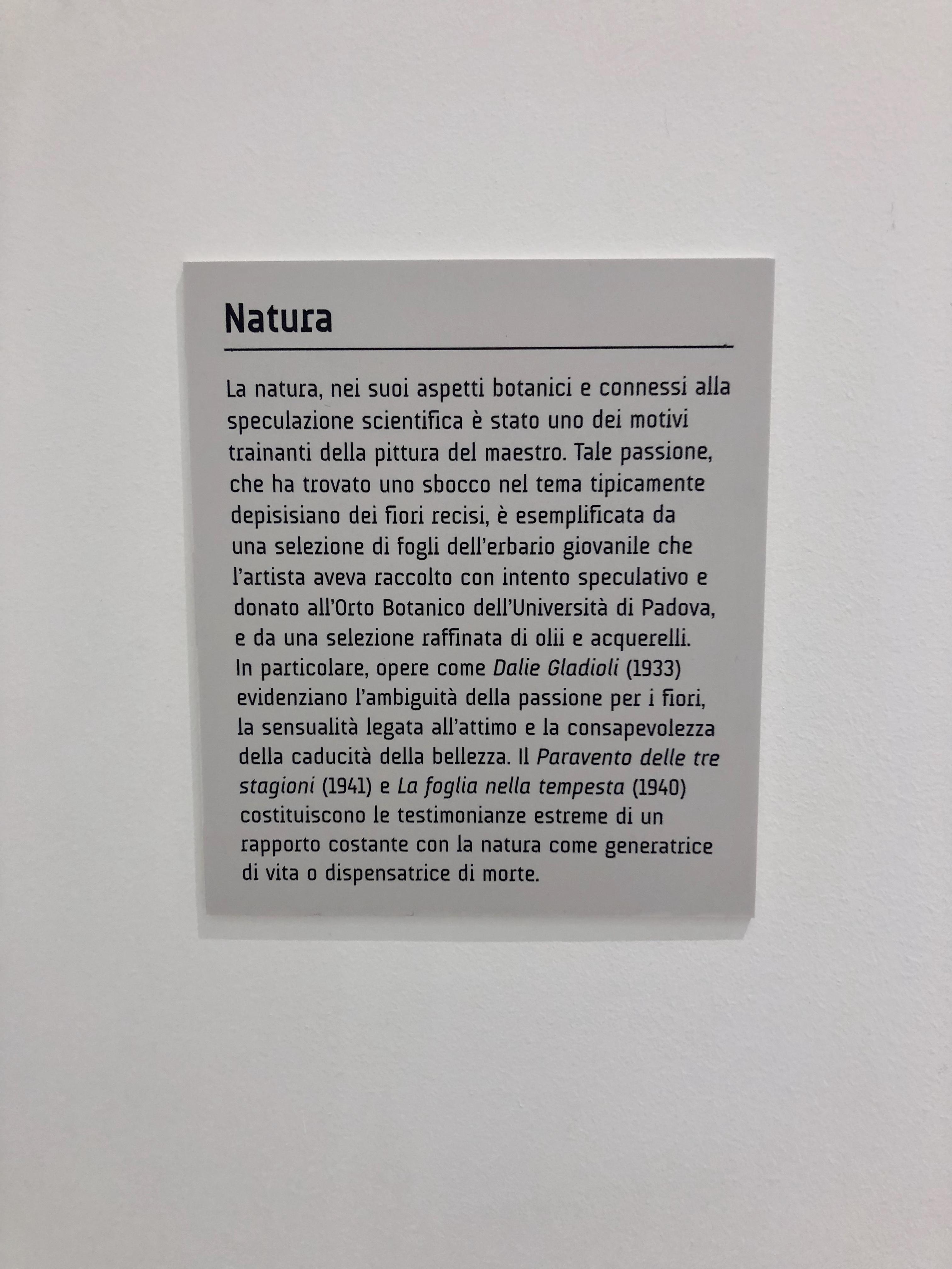 TalentiEventi_Filippo_De_Pisis_Eclettico_connoisseur_fra pittura_ musica_e_poesia_Museo_Ettore_Fico_12